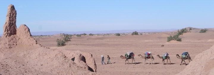 Randonnée dans le désert au Maroc