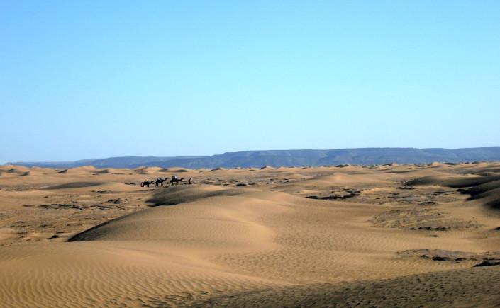 Randonnée chamelière dans les dunes rouges de Merzouga