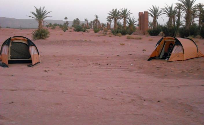 rando chamelière de l'oasis mhamid au lg de la frontière algérienne