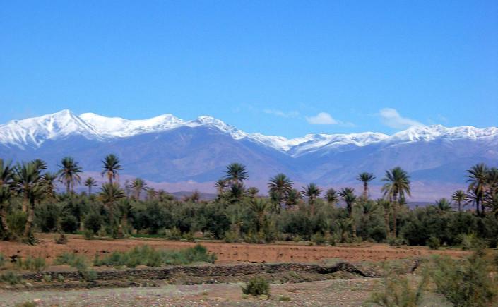 séjour spécial réveillon 2011 au coeur de l'oasis de skoura-1