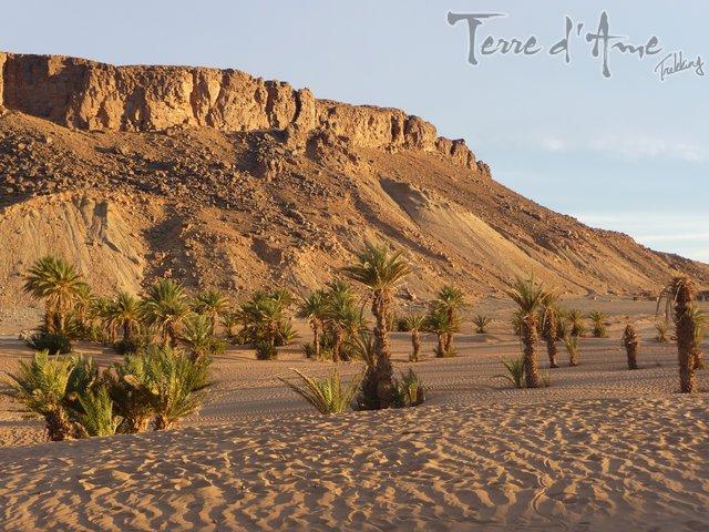 sejour-raquette-dans-le-massif-du-mgoun-et-randonnee-chameliere-au-desert-1-640px